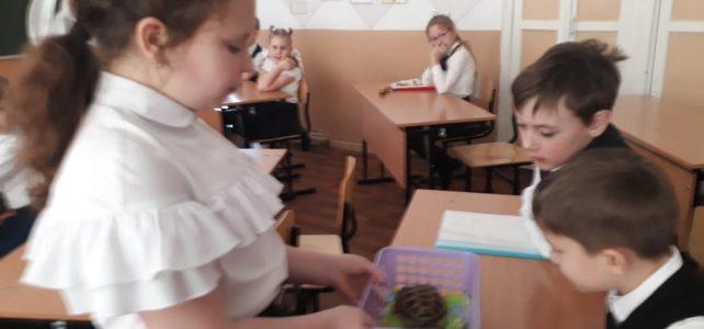 Муниципальный этап краевой научно-практической конференции для обучающихся начальной школы